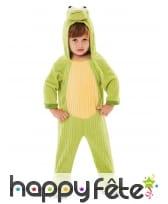 Costume de grenouille verte pour enfant