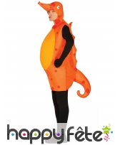 Costume d'hippocampe orange pour adulte