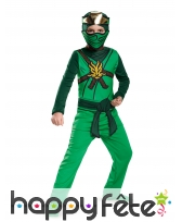 Costume de Lloyd