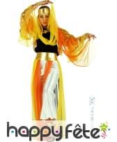 Costume danseuse orientale jaune