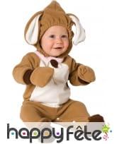 Costume de petit chien pour bébé