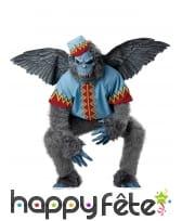 Costume de singe volant, magicien d'oz