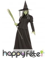 Costume de sorcière maléfique noir pour adulte