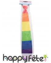 Cravate GayPride pour adulte, image 1