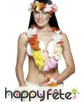 Collier hawaïen avec fleurs multicolores
