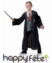 Costume Harry Potter avec baguette et lunettes