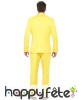Costume jaune uni, image 1