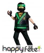 Costume Lego de Lloyd Ninjago pour enfant