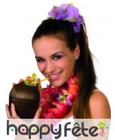 Coupe noix de coco Hawaïenne