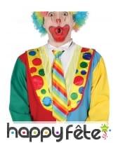 Cravate rayée de clown pour adulte