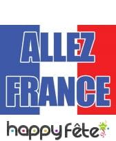 Drapeau Allez France de 70 x 100 cm