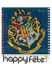 Décoration anniversaire thème Harry Potter, image 11