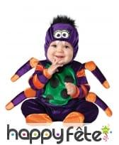 Déguisement de bébé araignée