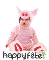 Déguisement de bébé cochon rose