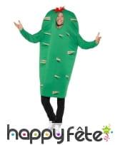 Déguisement de Cactus pour adulte