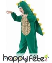 Déguisement de dinosaure vert pour enfant