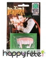 Dents de Dracula pour adulte