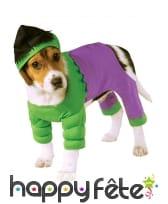 Déguisement de Hulk pour chien