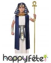 Déguisement de pharaon bleu blanc pour enfant, image 2