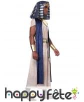 Déguisement de pharaon bleu blanc pour homme, image 2