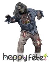 Déguisement de zombie décomposé pour adulte
