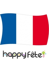 Drapeau France (120x180)