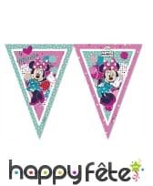 Déco Minnie pour anniversaire, image 8