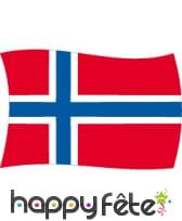 Drapeau Norvège (100x150)