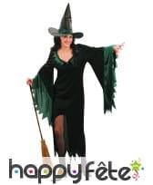 Déguisement robe sorcière noire et verte