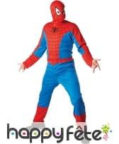 Déguisement spiderman adulte
