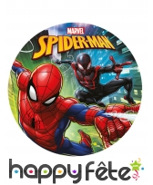 Disque Spiderman de 20cm en sucre
