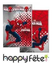 Décos Spiderman pour anniversaire, image 9