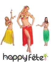 Ensemble de danseuse Hawaïenne