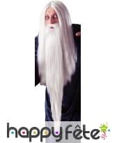 Fausse Barbe de magicien