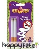Fausse cigarettes lot de 2