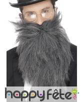 Fausse longue barbe avec moustaches grises