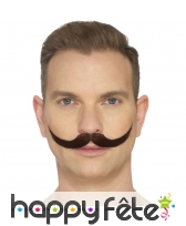 Fausse moustache anglaise, image 3