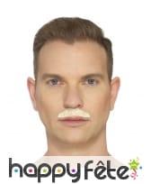 Fausse moustache chevron, image 2