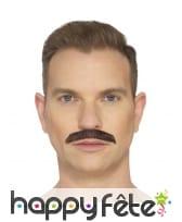 Fausse moustache de Queen, image 1