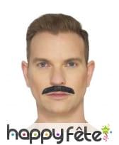 Fausse moustache de Queen, image 2