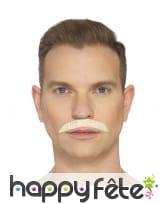 Fausse moustache de Queen, image 3