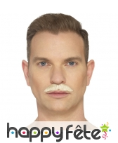 Fausse moustache du professionnel, image 1