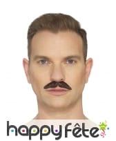 Fausse moustache du professionnel, image 2