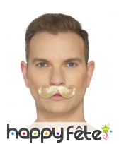 Fausse moustache impériale, image 1