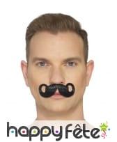 Fausse moustache impériale, image 2