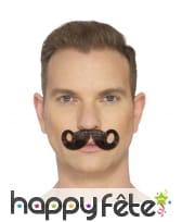 Fausse moustache impériale, image 3