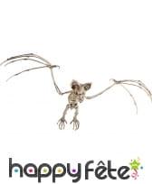 Faux squelette de chauve-souris