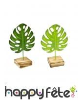 Feuille verte des tropiques sur base en bois