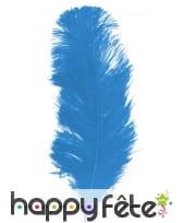 Grande plume bleue d'autruche 25/32cm