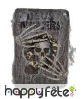 Grimoire squelette recouvert de toile 30x20cm